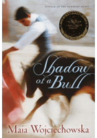 Shadow of a Bull - Reader